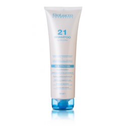 Salerm 21 Shampooing (300ml)